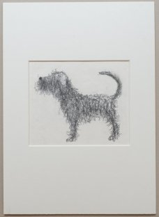 Lubomír Zich, The dog